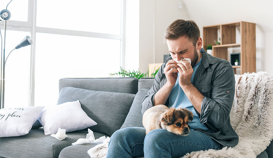 حساسیت به حیوانات خانگی